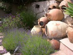 Jenn's Garden Apothecary — My Great Outdoors