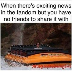 ALL THE TIME!!! Like for example THERE IS GOING TO BE A FLIPPING SPIRIT ANIMLS MOVIE AND NONE OF MY FRIENDS CARE!!! Not even the fangirls.