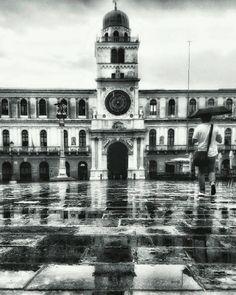 Walking in the rain.  #blackandwhite #italy #igpadova #igersbnw #volgoitaly #vivoveneto #vivo_italia #volgopadova #rain #city #umbrella #walking #reflection