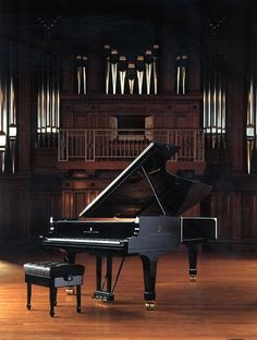 steinway...can't wait til the day i own one