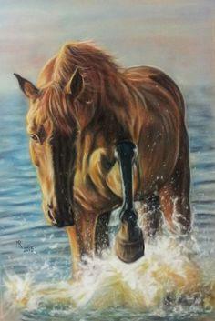 Chestnut Horse - soft pastels on velour paper, 30x40 cm, based on the photo made by Małgorzata Kuriata