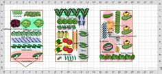 Garden Plan - 2013: Vickies Garden