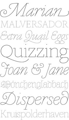 Marian Type Family By Paul Barnes 2012