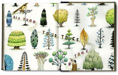 watercolor trees, arboretum painting, plant drawings