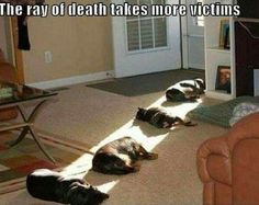 Sunbeam death ray