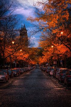 Image via We Heart It #autumn #city #cozy #fall #leaves #weather