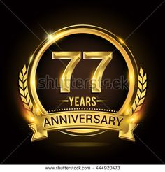 Celebrating 77 years anniversary logo with golden ring and ribbon, laurel wreath vector design.