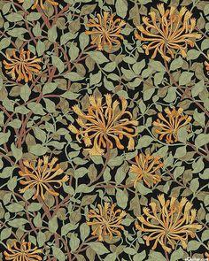 Best of Morris - Spider Mums on the Vine - Black Background Vintage, Vintage Backgrounds, Spider Mums, William Morris Art, Pattern Design, Fabric Design, Traditional Wallpaper, Wall Wallpaper, Botanical Art