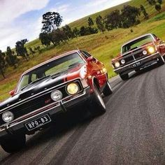 Australian Muscle Cars, Aussie Muscle Cars, American Muscle Cars, Ford Girl, Old Classic Cars, Ford Falcon, Hot Rides, Top Cars, Performance Cars