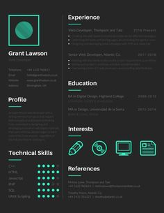 Techie Web Developer Resume