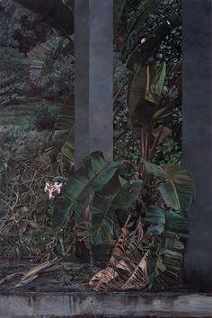 Deborah Poynton Photographic Film, Nude Portrait, Africa Art, Hyperrealism, Postmodernism, Wood Art, Storytelling, South Africa, Contemporary Art