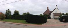 Landelijke tuin, snoei en onderhoud door Artgreen.