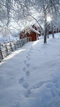 Winter in Åsens By, Småland, Sweden Kathy Snow scenes Winter Szenen, I Love Winter, Winter Magic, Winter Christmas, Winter White, Winter Walk, Winter Season, Snowy Day, Snow Scenes