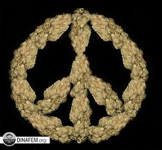 Live and let live ;) Peace and love. #WorldPeaceDay #Marijuana #Peace #Love #Weed #Pot #Cannabis