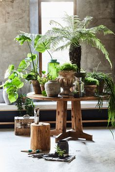 Round HK Living table made of reclaimed teak. Nice to combine in a Scandinavian interior design with rattan chairs HK Living. Interior Plants, Interior And Exterior, Indoor Garden, Indoor Plants, Villas Boas, Table Teck, Decoration Plante, Room With Plants, Teak Table