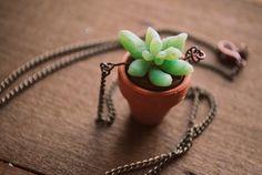 succulent necklace.    (((((((((<3)))))))))))