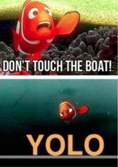 ugh i hate the whole yolo thing, but this is quite funny