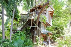Miami, FL--For $65 a night, you can rent a treehouse on a permaculture farm in the Little Haiti neighborhood of Miami, the farm is home to goats, chickens, emus, and pigs, the sleeping quarters are on the 3rd floor and the room isn't fully enclosed, but guest describe the space as magical.