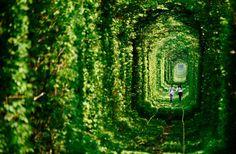 O extenso e verde Túnel do Amor, na Ucrânia, tem esse nome devido sua atmosfera romântica, que acaba atraindo muitos casais, que acabam indo ao local para fazer suas juras de amor.