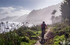 Travel through expansive tussock downs, lush forests and nīkau palms to the roaring seas of the West Coast.