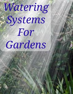 Time Saving, Economic Watering Systems for Gardens Homestead Gardens, Farm Gardens, Organic Gardening, Gardening Tips, Garden Watering System, Garden Hose Holder, Water Collection, Sustainable Farming, Time Saving