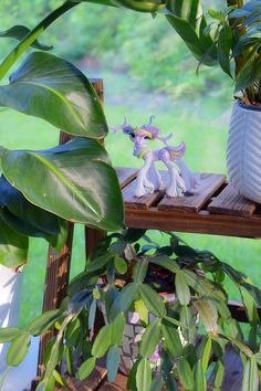 Add some magic between your favorite houseplant! Whisper Fillies bring that extra pop of color to any Figurine or plant shelf or display stand. Collectible fantasy figurines handmade from polymer clay Plant Shelves, Shelfie, House Plants, Color Pop, Whimsical, Display, Whisper, Polymer Clay, Magic