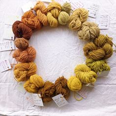 Gastbeitrag von Kathrin: Färben mit Naturfarben – Die Hinterwäldler Crochet Necklace, Jewelry, Natural Crafts, Dyeing Fabric, Flowering Plants, Natural Colors, Jewlery, Crochet Collar, Bijoux