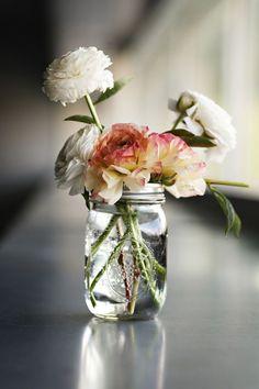 Quando os vidros viram vasos...