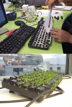 The Best April Fool's Pranks Ever, just be prepared to buy them a new keyboard xP Work Pranks, Great Pranks, Best April Fools Pranks, April Fools Day, Evil Pranks, Funny Pranks, Pranks For Coworkers, Summer Fun List, Practical Jokes