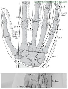 K1 or Kidney 1 #acupressure point is also known as the ...