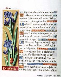 Book of Hours, MS M.732 fol. 6v - Images from Medieval and Renaissance Manuscripts - The Morgan Library & Museum