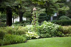 Sträucher und Reben sind perfekt für in Features wie Laternen. Es dauert eine potenziell Ort Funktion aus und integriert es in den Rest der Landschaftsgestaltung.