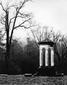 This photo by Dr. Roy Ward is of a grave monument and tree in Oconee Hills Cemetery in Athens. Both photos are by Watkinsville artist Roy Ward