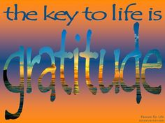 The key to life is Passion For Life, Better Life, Gratitude, Keys, Concept, Thoughts, Grateful Heart, Key, Thanks