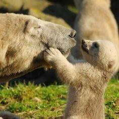Pucker up mom.....