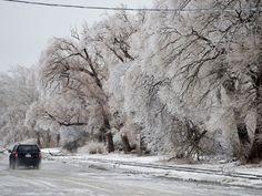 toronto ice storm   Toronto ice storm 2013: Photos from the GTA's winter nightmare ...