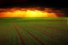 Pole, Ciemne, Chmury, Zachód słońca