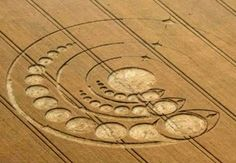 What You Didnt Know About Crop Circles - This Is Not A Hoax - Crop Circle Research