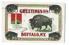 Greeting Card Buffalo NY 3 color Vtg. Post Card 1908 H.I. Robbins Boston