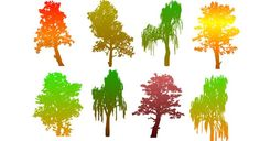 Colourful Tree Silhouettes : Free Vector Site