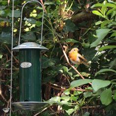 Mangeoire en metal pour oiseaux sur piquet patine rouille garden deco jardin pinterest - Oiseaux metal pour jardin ...