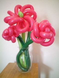 Cool Balloon Flowers