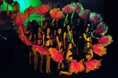 Com glamour e elegância, representante de Vitória é eleita Miss Espírito Santo 2010 - Folha Vitória