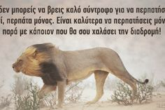 Osho: Όλα τα αρνητικά συναισθήματα τρέφονται από την ενέργειά σου - spiritalive.gr Lion Quotes, Words Quotes, Wise Words, Colors And Emotions, Greek Quotes, Art Of Living, Real Life, Reading, Selfie