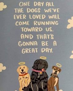 Dog Poems, Dog Quotes, Animal Quotes, Animal Pics, I Love Dogs, Puppy Love, Cute Dogs, Animals And Pets, Cute Animals