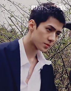 Sehun, Sofia Coppola, Most Handsome Men, League Of Legends, Photos, Tumblr, Kpop, Celebrities, People