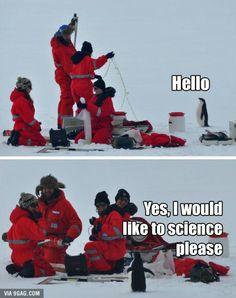 La ciencia del pingüino