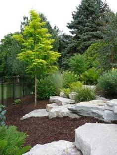 Great outdoor landscaping ideas site. I pinned this as a great idea for my side yard out front. Low maintenance boulders!!! And mulch. by jolene                                                                                                                                                      More