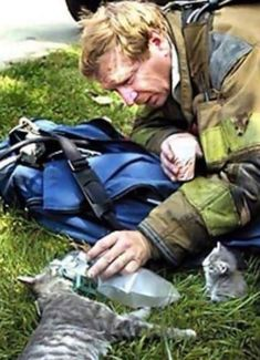 4. Firefighter resuscitating a cat with a respirator as her kitten looks on.