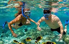 Snorkeling Cape Vidal Beautiful and safe snorkeling with us in the warm Indian Ocean. We provide all the equipments:)